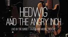 STGtv: Hedwig and The Angry Inch